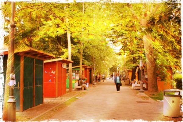 rue de pavie
