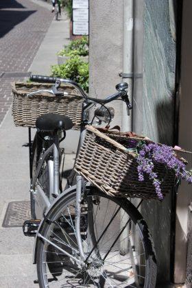 vélo avec lavande